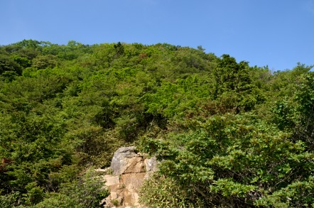 御在所岳 中登山道