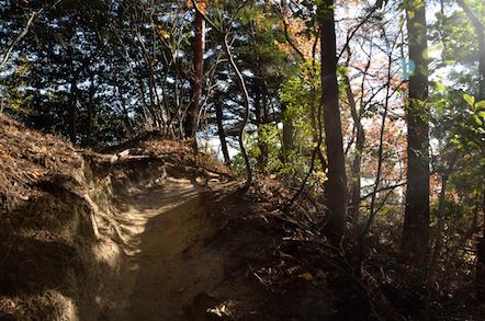 猿投山 大岩展望台