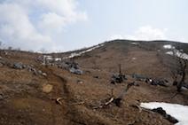 霊仙山 登山道