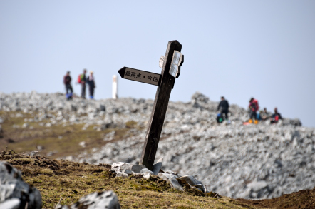 霊仙山山頂 最高点分岐