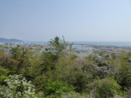 石巻市 日和山公園 門脇 南浜