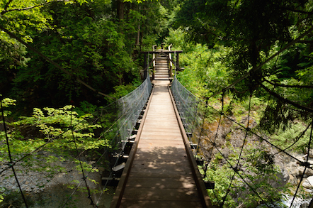 阿寺渓谷 遊歩道 中八丁吊り橋