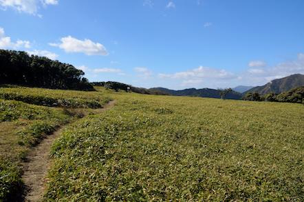 入道ヶ岳 登山 北尾根コース