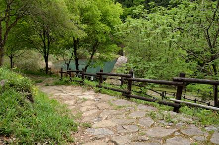 権現山からながら川ふれあいの森駐車場