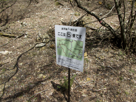 雨乞岳 登山 武平峠コース 5番