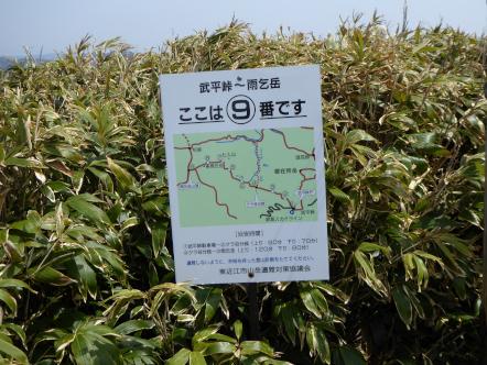 雨乞岳 登山 武平峠コース 9番