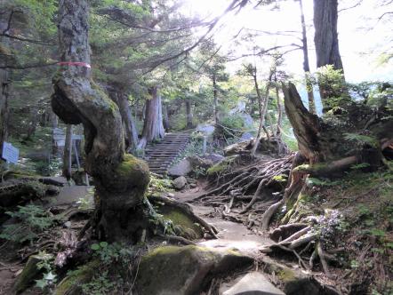 御嶽山 小坂口ルート 湯の花峠