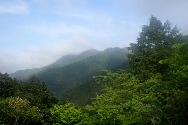 竜ヶ岳 登山 遠足尾根