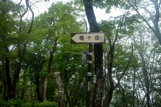 竜ヶ岳 登山 遠足尾根・新道分岐