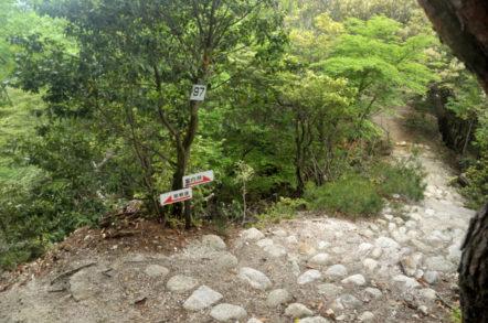 竜ヶ岳 砂山ルート