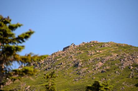 白山 アルプス展望道 御前峰