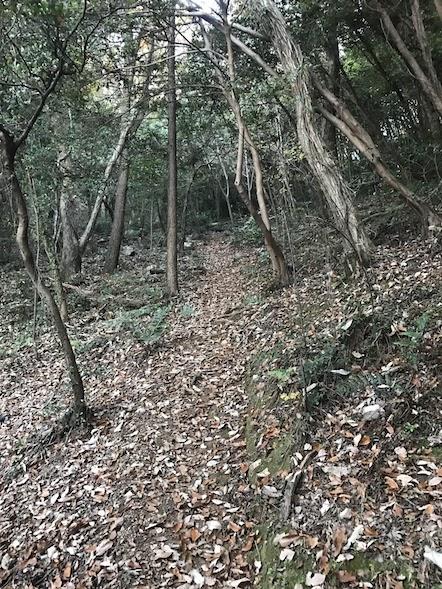 百々ヶ峰 松尾池ルート