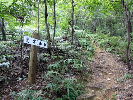 愛宕山 西登山道