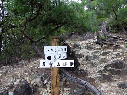 愛宕山〜双子山〜八木山 縦走路