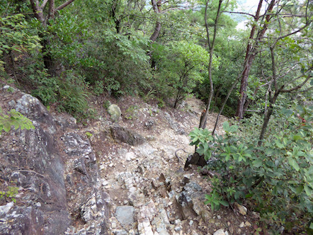 八木山 東登山道
