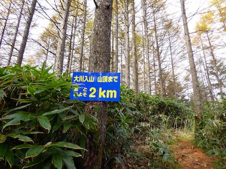 大川入山 登山 あと2km看板