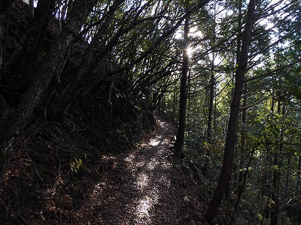 不寝王子〜高原熊野神社