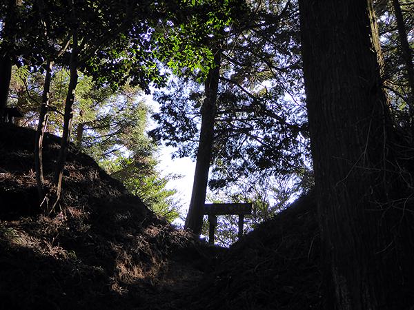 錫杖ヶ岳 加太ルート 柚之木峠